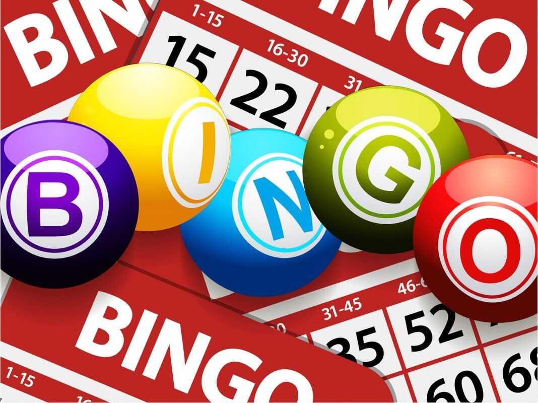 trò chơi bingo là gì