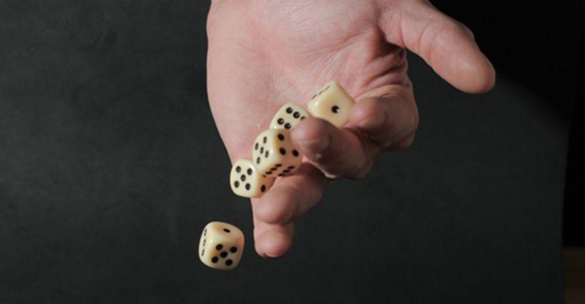 kinh nghiệm chơi cờ vòng quanh thế giới