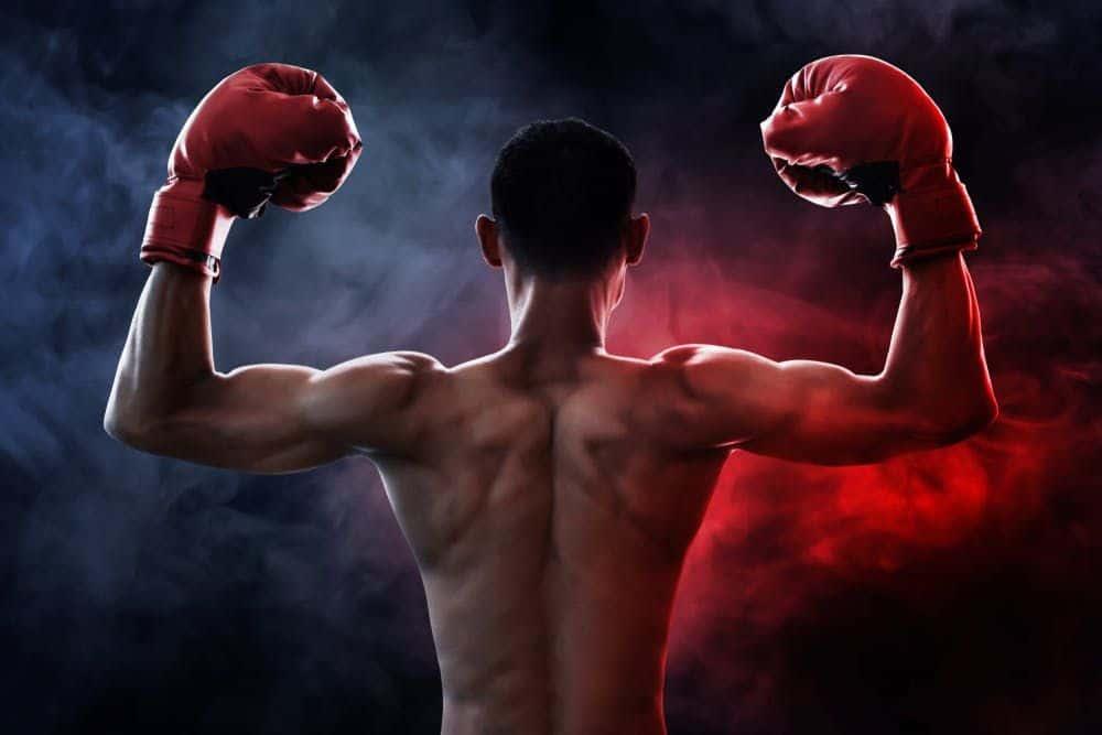 Boxing là gì? Hướng dẫn cách đặt cược các giải Boxing W88